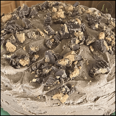 Chocolate Cake with Peanut Butter Frosting | One Step Woman